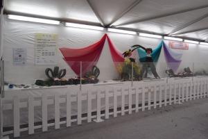 二零一五年香港花卉展覽—香港展能藝術會攤位相片(全景)