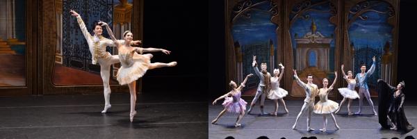 「輕輕鬆鬆睇芭蕾:《睡美人》篇」宣傳圖像